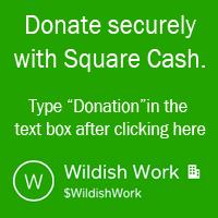Donate through Squarecash
